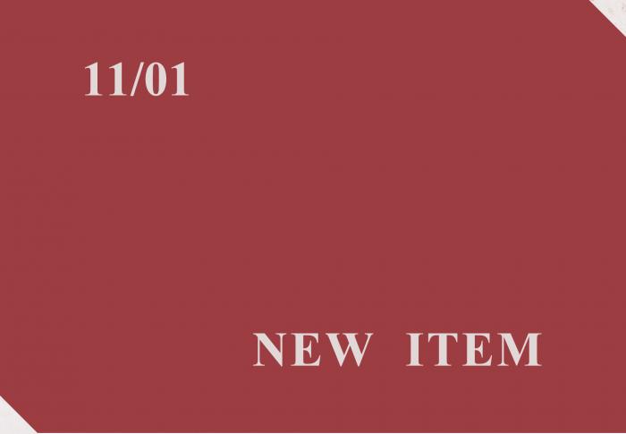 11月1日 入荷商品