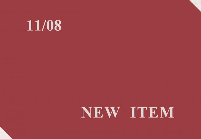 11月8日 入荷商品
